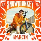 Snow Monkey by Marcin
