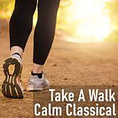 Take A Walk Calm Classical by Various Artists
