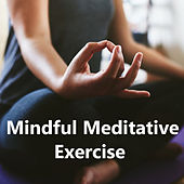 Mindful Meditative Exercise de Various Artists