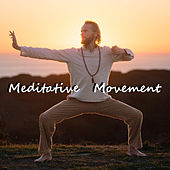 Meditative Movement by Various Artists