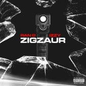 ZIGZAUR by Ran-D