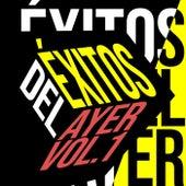 Éxitos del Ayer Vol. 1 by Various Artists