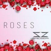 Roses by Saiid Zeidan