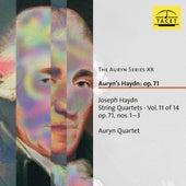 The Auryn Series, Vol. 20 von Auryn-Quartet