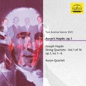 The Auryn Series, Vol. 17 von Auryn-Quartet