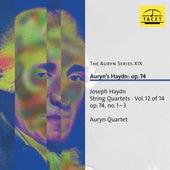 The Auryn Series, Vol. 19 von Auryn-Quartet