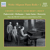 Welte-Mignon Piano Rolls, Vol.  1 (1905-1927) by Various Artists