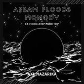 Assam Floods Monody Lo-fi Chillstep Music Trip de Axl Hazarika