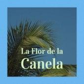 La Flor De La Canela by Agustin Lara, Carlos Montoya, Lola Beltran, Benny Martin, Beny More, Big Maybelle, Amalia Mendoza, Julio Jaramillo, Arsenio Rodriguez