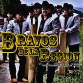 Vuelvo by Bravos De La Region