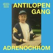 Adrenochrom von Antilopen Gang