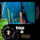 Top a Top de El Taiger