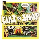 Cult of SNAP! de Snap!