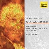 The Auryn Series, Vol. 31 von Auryn-Quartet