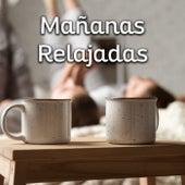 Mañanas Relajadas von Various Artists