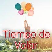 Tiempo de Volar von Various Artists
