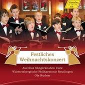 Festliches Weinachtskonzer by Various Artists