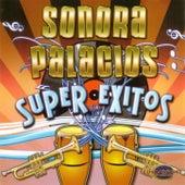 Super Éxitos by Sonora Palacios