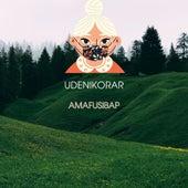 Udenikorar (Live) by Amafusibap