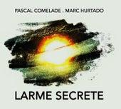 Larme Secrete by Pascal Comelade