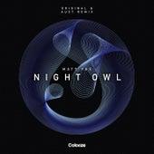 Night Owl (AUST Remix) by Matt Fax