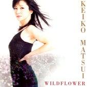 Wildflower by Keiko Matsui