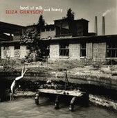 Land Of Milk & Honey by Eliza Gilkyson