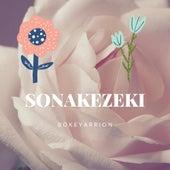 Sonakezeki (Live) von Bokeyarrion