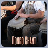 Bongo Chant de Rafael Farina, Peggy Lee, Arsenio Rodriguez, Doris Day, Pedro Infante, Charlie Rich, Kenny Graham