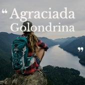 Agraciada Golondrina by Tito Guizar, Los Alegres de Teran, Antonio Machin, George Gershwin, Julio Jaramillo, Bobby Darin, Canalejas de Puerto Real, Juanito Varea, Beny More