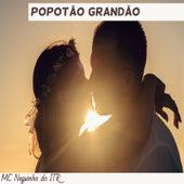 Popotão Grandão by Mc Neguinho do ITR