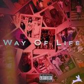 Way of Life by Mafia