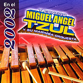 En el 2002 by Miguel Angel Tzul Y Su Marimba Orquesta