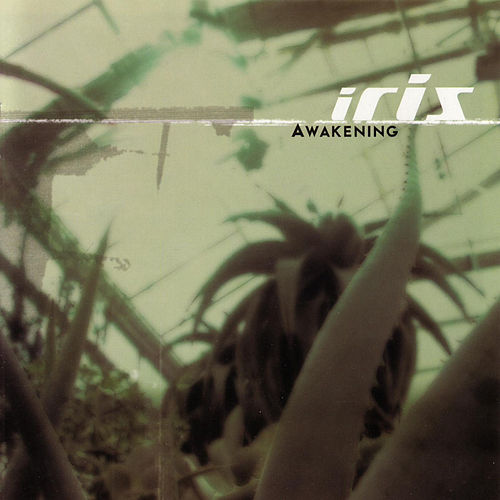 Awakening by Iris (A Different Drum)