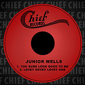 You Sure Look Good to Me by Junior Wells