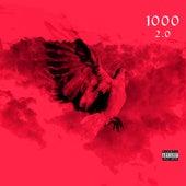 1000 (2.0) by Chris Lee