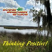 Thinking Positive by Roger Hurricane Wilson
