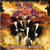 Loqueando en Michoacan van La Ley De Michoacan