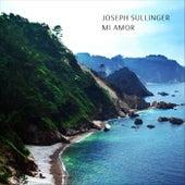 Mi Amor de Joseph Sullinger