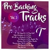 Pro Backing Tracks T, Vol.3 by Pop Music Workshop