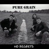 No Regrets by Pure Grain