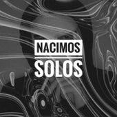 Nacimos Solos by Shimi