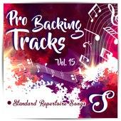 Pro Backing Tracks S, Vol.15 by Pop Music Workshop
