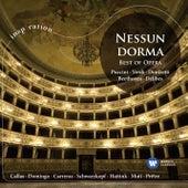 Best Of Opera [International Version] (International Version) by Various Artists