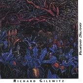 Voluntary Solitary by Richard Gilewitz