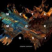 Metamorfosi von Joseph Capriati