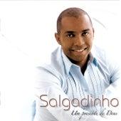 Um Presente De Deus by Salgadinho
