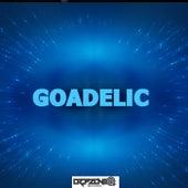 Goadelic fra Various Artists