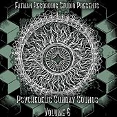 Psychedelic Sunday Sounds, Vol. 6 by Fatman Recording Studio