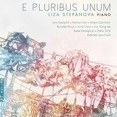 E pluribus unum by Liza Stepanova